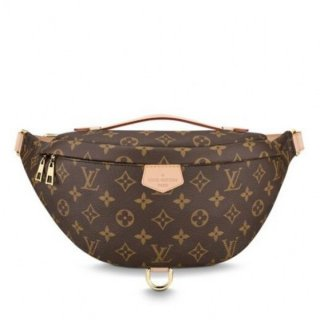 Louis Vuitton Bumbag Bag Monogram Canvas M43644