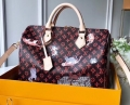 Louis Vuitton Catogram Monogram Canvas Speedy 30 Bandouliere Bag M44401 Brown