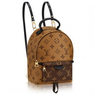 Louis Vuitton Palm Springs Backpack Mini M42411
