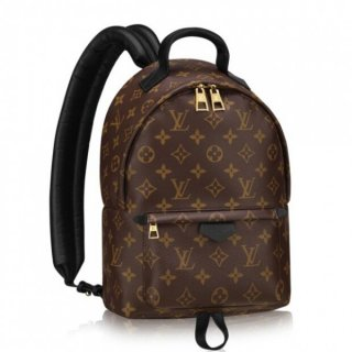 Louis Vuitton Palm Springs Backpack PM M41560