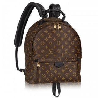 Louis Vuitton Palm Springs MM Backpack M41561