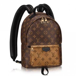 Louis Vuitton Palm Springs PM Backpack Monogram Reverse M43116