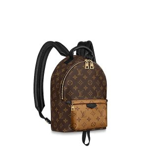Louis Vuitton Palm Springs PM Monogram Canvas Backpack M44870