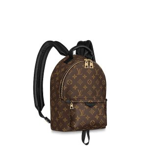 Louis Vuitton Palm Springs PM Monogram Canvas Backpack M44871